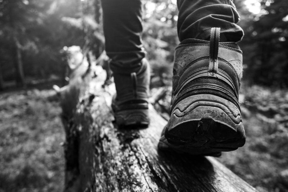 sfs-brandikuva-hiking-boots-1.jpg (90 KB)